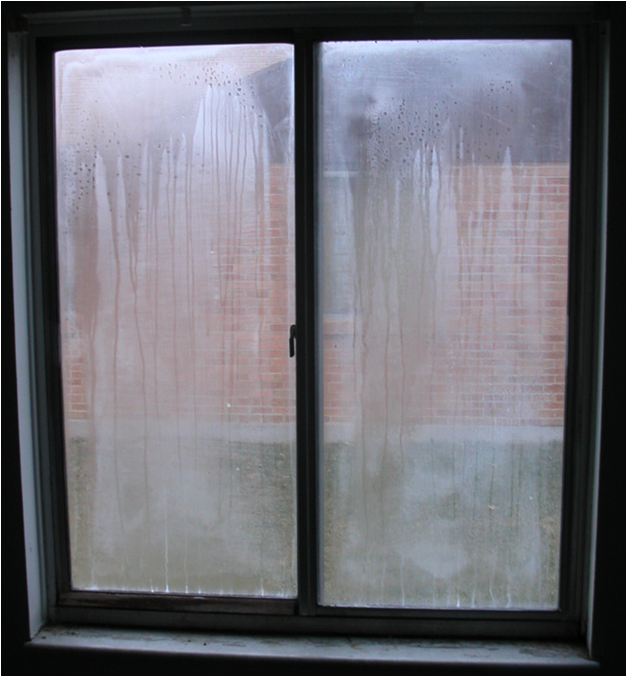 Window Seal Failure